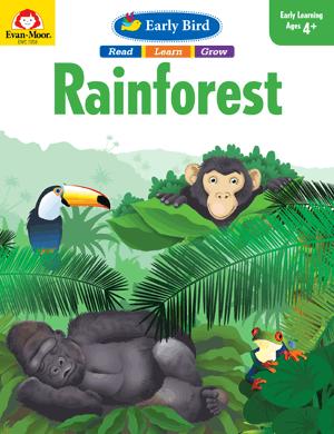 Early Bird: Rainforest
